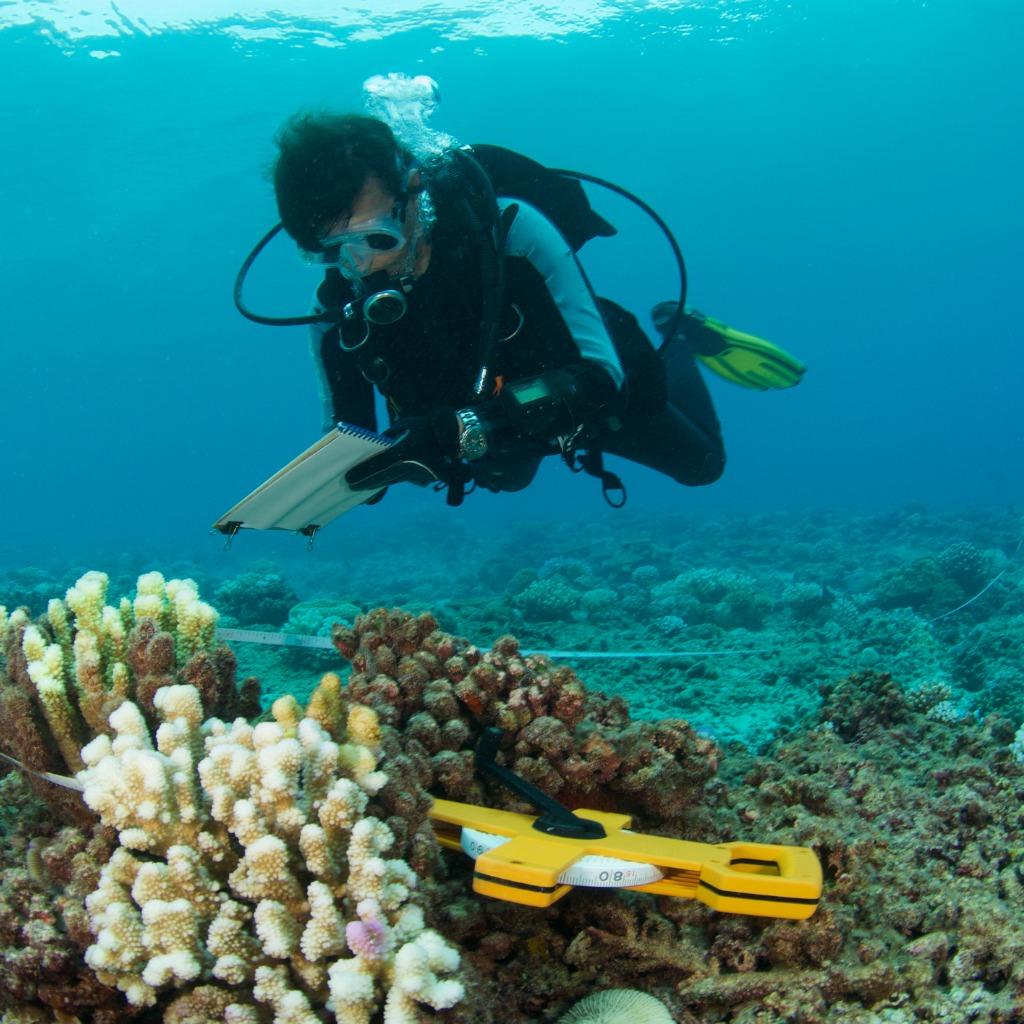 A Marine Biologist Needs