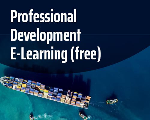 Professional Development E-Learning