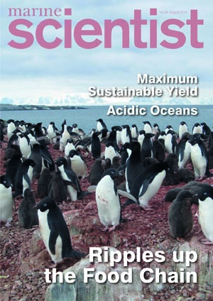 Marine Scientist Magazine