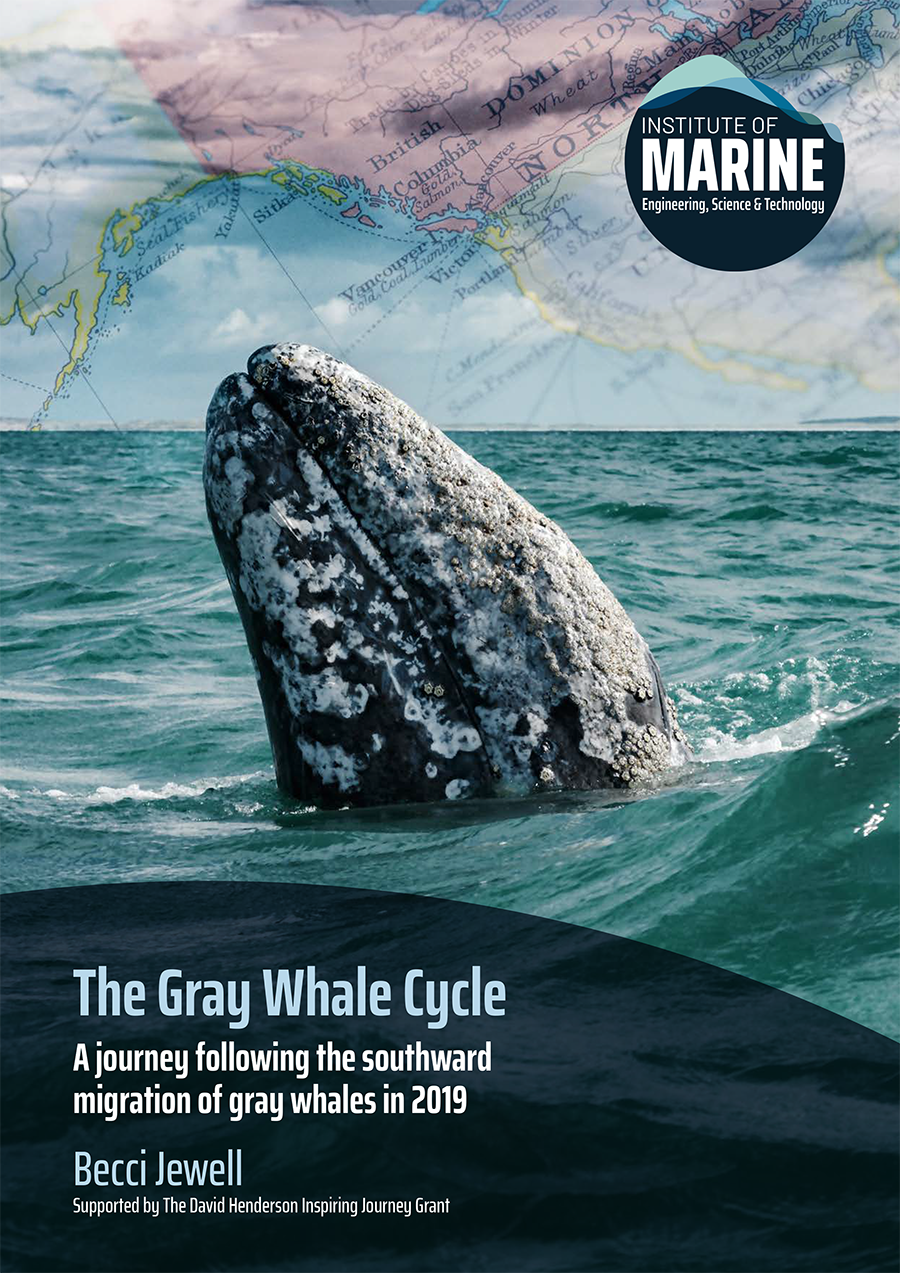REPORT: The Gray Whale Cycle: Following the southward migration of gray whales - Becci Jewell