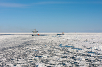 Joint Institute Meeting: The Pilot Ice Breaker