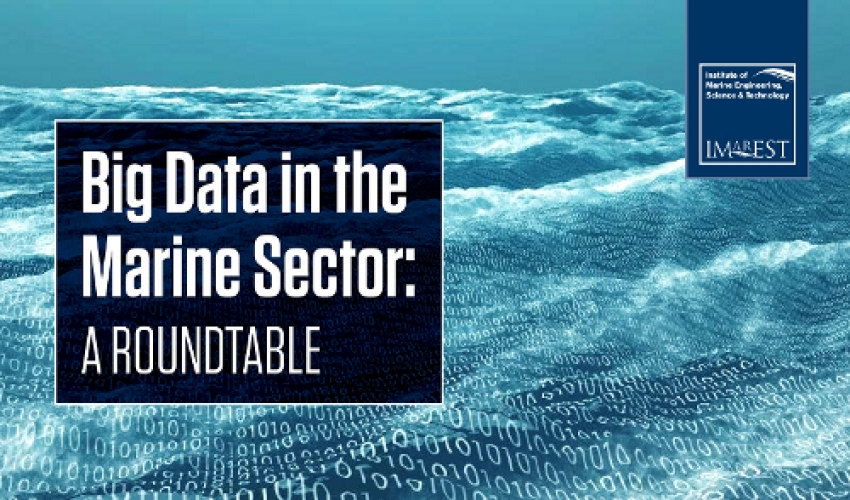 "Big data in the marine sector: avoiding ""Ozone Hole 2.0"" and other challenges."