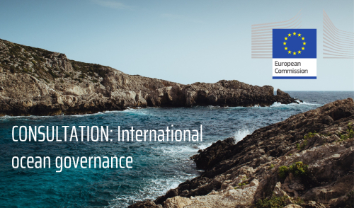 Consultation: International ocean governance