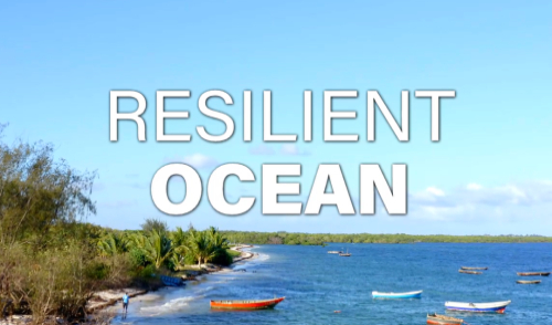 IMarEST presents 'Resilient Ocean' a collaboration with ITN Productions