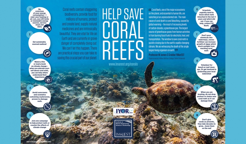 Ten easy things you could do to help save coral reefs