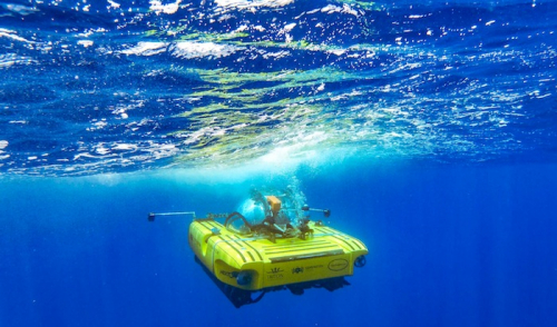 Nekton to lead expedition into Indian Ocean's Midnight Zone