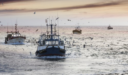 The FISHER Project – a global fishing accident data management system