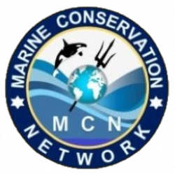 Marine Conservation Network▒